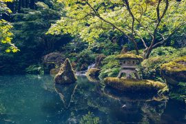 A walk through Portland Japanese Garden |BananaBloom.com